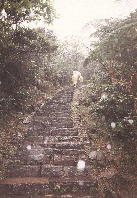 [台北貢寮].新草嶺古道.風雨行(Tony的自然人文旅記第0032 ...