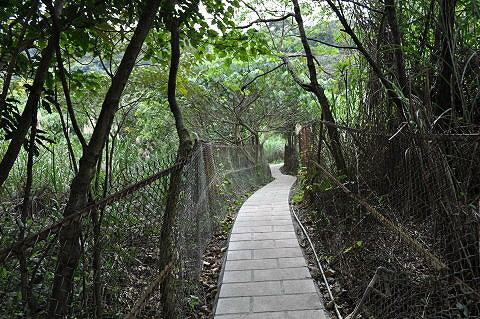 福正宫旁的圆山风景区牌楼上山,是登剑潭山的主要步道, 一则交通较