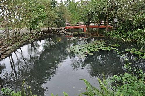 池塘排水闸设计图