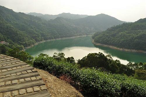 茶园.石碇千岛湖