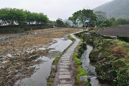 沿著田埂石板路,前往觀賞「水中央」景觀.
